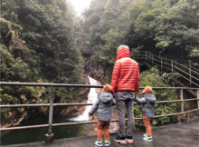 带着双胞胎去旅行|郴州莽山国家森林公园