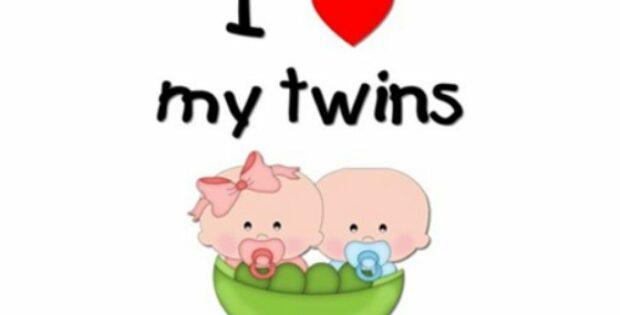 养育双胞胎|今天,你记了吗?